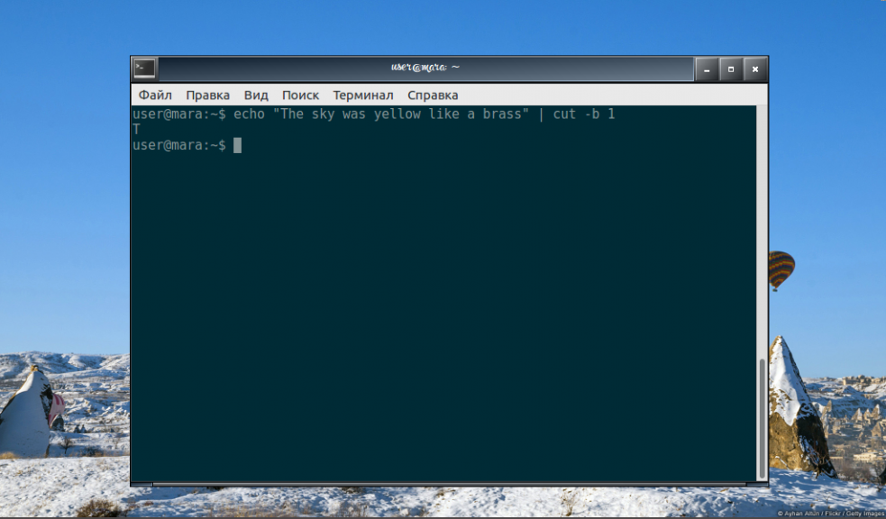 The cut command Linux